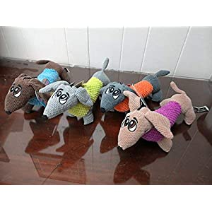 Bow Wow Pet Dashing Dachshund Tug, Squeak, Play Dog Toy in 42