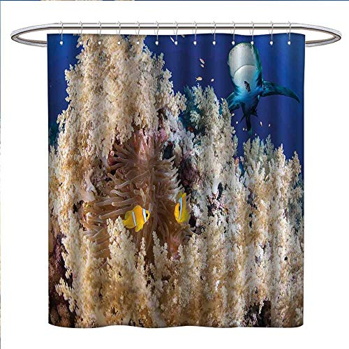 Jinguizi Shark Shower Curtains Fabric Reef with Little Clown Fish and Sharks East Egyptian Red Sea Life Scenery Food Chain Bathroom Decor Set with Hooks W48 x L84 Blue Cream