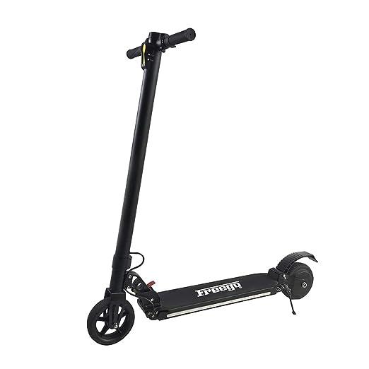 Dapang Bicicleta eléctrica Plegable - 250W 36V E-Bike a Prueba de ...