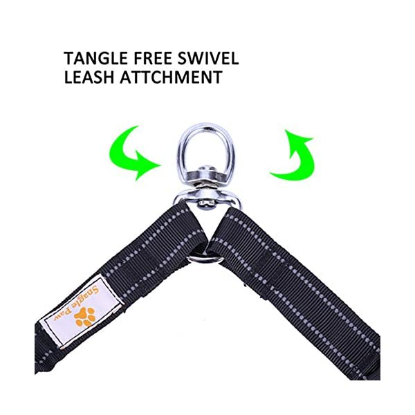 Snagle Paw Tangle Free BungeeX2 Double Dog Leash Coupler, 360° Swivel No Tangle Double Dog Walking & Training Leash, Comfortable Shock Absorbing Reflective Bungee Lead Walk 2 Dogs with Ease 3