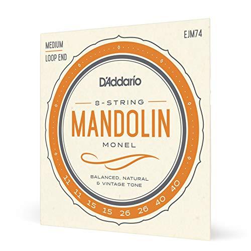 D'Addario Mandolin Monel Set