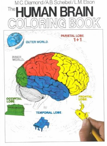 The Human Brain Coloring Book (Cos 306) The Human Brain Coloring Book