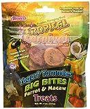 F.M.Brown's Tropical Carnival Yogurt Yummies Big Bites Parrot & Macaw Treats 4 oz