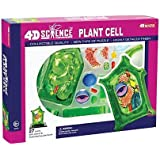 Famemaster 4D-Science Plant Cell Anatomy Model