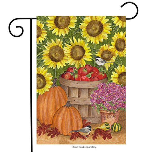 Briarwood Lane Apple Basket & Mums Garden Flag Fall Autumn Orchard Harvest Pumpkin Birds - Flag Apple Basket