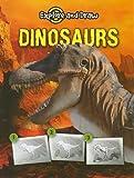 Dinosaurs, Ann Becker, 1606948342