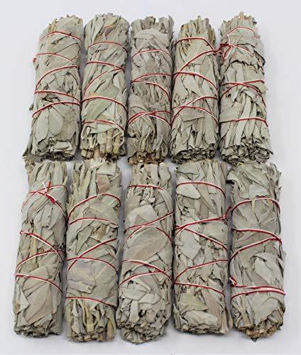 Ngeamsuwanshop Wholesale Bulk White Sage Smudge Stick 10 Cleansing ()