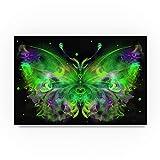 Butterfly 5 by RUNA, 22x32-Inch Canvas Wall Art