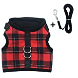 Escape Proof Cat Harness with Leash - Adjustable