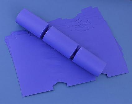 Amazon 12 dark purple make fill your own cracker boards home 12 dark purple make fill your own cracker boards solutioingenieria Gallery
