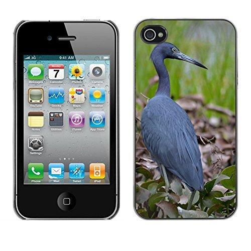 Premio Sottile Slim Cassa Custodia Case Cover Shell // F00013621 oiseau // Apple iPhone 4 4S 4G