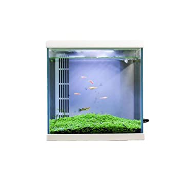 Acuario acuario peces hogar inteligente ecológico tanque de peces ...