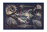 Kitchen Rugs Bamboo Mat Bamboo Rug Kitchen Floor Mats 2 x 3 Feet Beach Theme Blue Shells