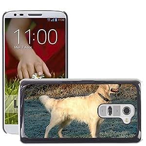 GoGoMobile Etui Housse Coque de Protection Cover Rigide pour // M00124234 Golden Retriever perro canina de // LG G2 D800 D802 D802TA D803 VS980 LS980
