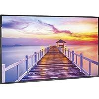 NEC E425 42 Full HD Commercial LED Monitor