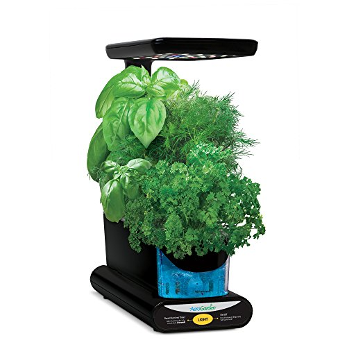 AeroGarden Sprout LED with Gourmet Herb Seed Pod Kit, Black - Patio Herb Garden