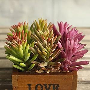Supla 9 Pcs faux succulents unpotted Vinyl Artificial Succulent Galanthus Cactus Plants Artificial Plants 3 Colors fake succulents Flower Arrangement Craft Making 2