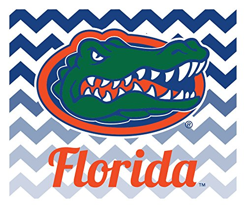 FLORIDA GATORS CAR MAGNET-FLORIDA GATORS AUTO MAGNET-2 PACK-5