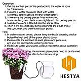 Hestya Watering Stakes Automatic Watering