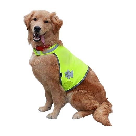 ZYDSD Suministros para Mascotas Ropa para Perros Ropa para ...