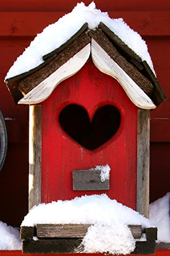 valentines-day-greeting-cards-red-bird-inn-rbi100-business-greeting-card-featuring-a-red-bird-house-