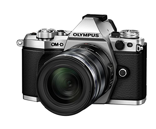 Olympus E-M5 Mark II  with M.ZUIKO DIGITAL ED 12-50mm F3.5-6.3 EZ  - International Version