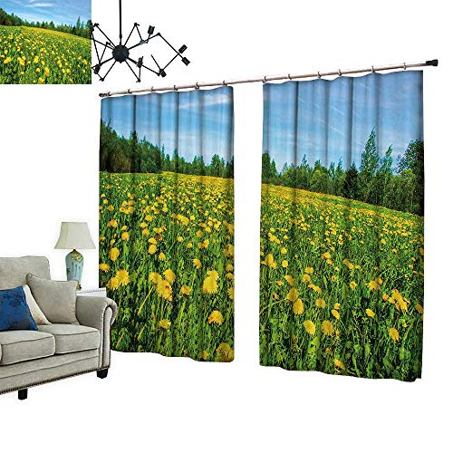 PRUNUS Room Darkening Curtain with Hooked Meadow Flowers, d delion fie Thermal Insulated Blackout Window Curtain,W84.3 xL108