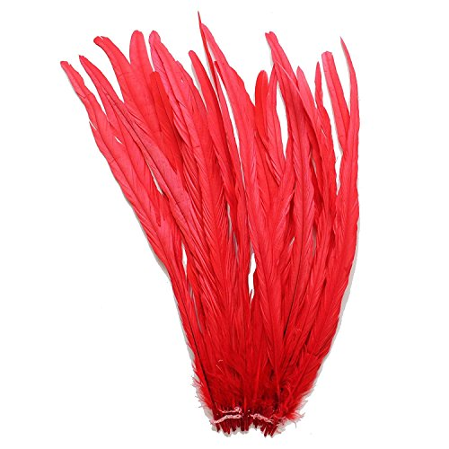 (CENFRY Nature Rooster Coque Tails Feathers Costume Craft Decoration 12-14inch Pack of 25)