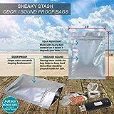 Sneaky Stash Hair Brush & Battery Diversion