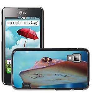 Hot Style Cell Phone PC Hard Case Cover // M00111916 Animal Aqua Aquarium Colorful Diving // LG Optimus L5 II Dual E455 / E460