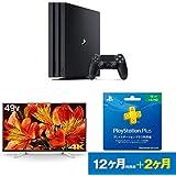 PlayStation 4 Pro ジェット・ブラック 1TB  + ソニー ブラビア 49V型液晶テレビ(KJ-49X8500F) + PlayStation Plus 12ヶ月利用権 セット
