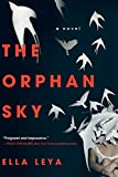 Image of The Orphan Sky