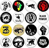 Black Panther Party 16 New 1 Inch (25mm) Set of 16 Pinback Buttons Badges Pins 1'