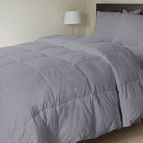 Elegant Quality 300 GSM 100% Pure Organic Cotton 600 TC Comforter Cozy Ultra-Soft Fluffy Italian Finish Luxury Goose Down Quilt Box Stitched Comforter By LINEN SHOPPE (Full/Queen,Silver - Us Shopping India Online To