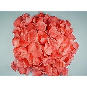 Ben Collection 300 Pieces Silk Rose Petal Wedding Decoration (Coral) 1