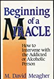 Beginning of a Miracle, M. David Meagher, 0932194478