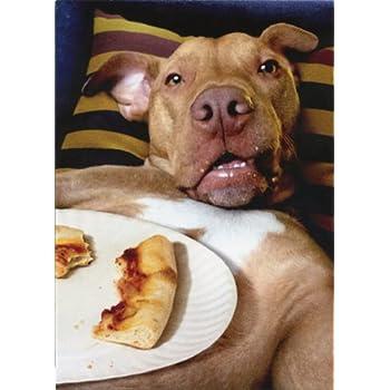 Amazon Dog Pizza Plate Avanti Funny Birthday Card Health
