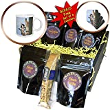 3dRose Susans Zoo Crew Animal - Giraffe peering out behind post - Coffee Gift Baskets - Coffee Gift Basket (cgb_294892_1)