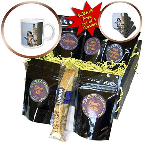 3dRose Susans Zoo Crew Animal - Giraffe peering out behind post - Coffee Gift Baskets - Coffee Gift Basket (cgb_294892_1) by 3dRose