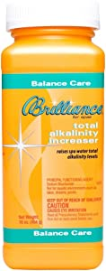 Brilliance for Spas Total Alkalinity Increaser (1, 1 lb)