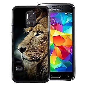 Red-Dwarf Colour Printing Messy Hair Lion Mane Golden Brown - cáscara Funda Case Caso de plástico para Samsung Galaxy S5 Mini, SM-G800, NOT S5 REGULAR!