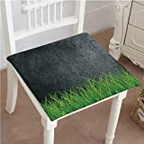 Mikihome Classic Decorative Chair pad Seat Antique Old Planks American Style Western Rustic Wooden with Thick Growth of Grass Cushion with Memory Filling 22''x22''x2pcs