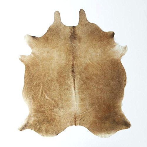 RODEO Peanut Butter Exotic Brown Cowhide Cowskin hides Rug PB67 Size Approx 6x7 ft