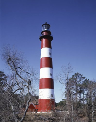 "Photography Poster - Lighthouse on Assateague Island Virginia 11"" x 14"""