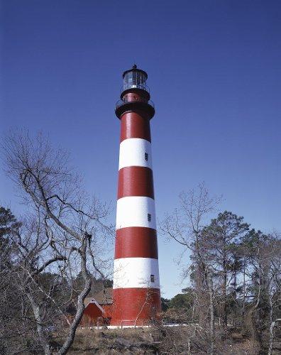 Photography Poster - Lighthouse on Assateague Island Virginia 11