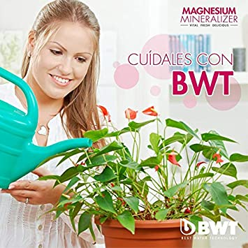 BWT Wasserfilter mit Filterset 6//12 polymere Kunststoffe Modern 12 dunkelviolett