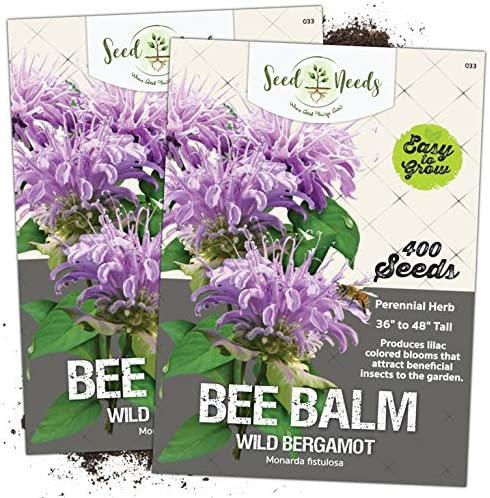 25 Bee Balm Panorama Mix Flower Seeds For Spring Plantings