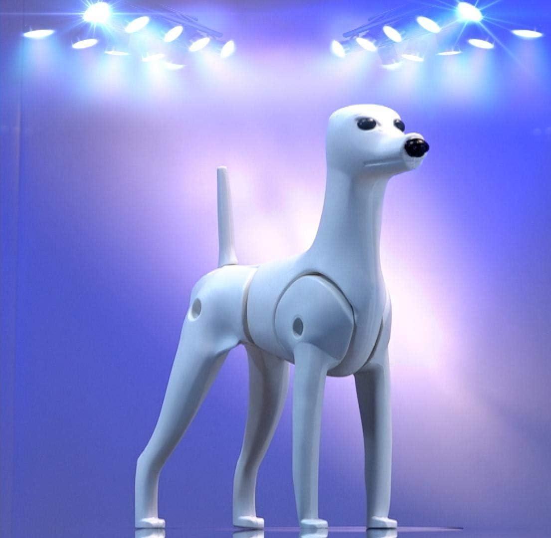 cuerpo de plastico de perro para peluqueria canina virtual dog