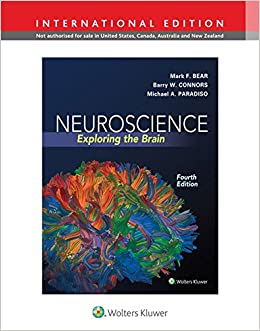 Neuroscience exploring the brain international edition amazon neuroscience exploring the brain international edition amazon mark f bear barry connors mike paradiso books fandeluxe Choice Image