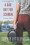 A Bad Day for Scandal: A Crime Novel (Stella Hardesty Crime Novels)